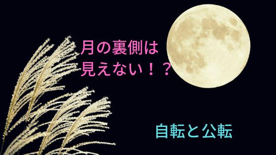 月の裏側は 見えない!?